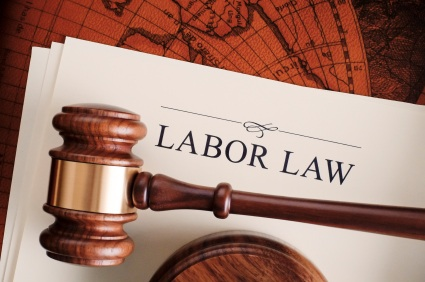 Labor_Employment_Law_2013_IMEC.jpg